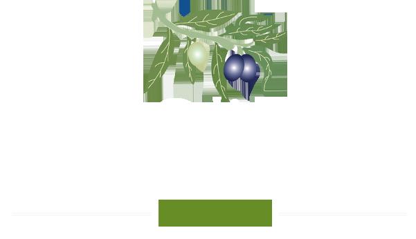 Camping Hôtellerie de plein-air les Oliviers Porto Corse